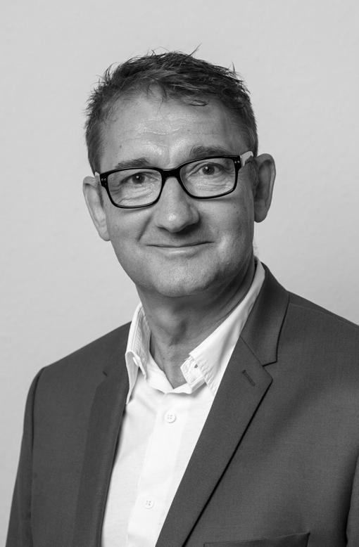 Denis Gringer - Consultant / Coach – Chef de Projet